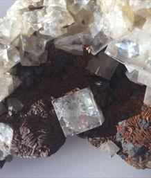 Fluorite with single crystal plus Galena. West Pastures Mine Weardale 537g Sourced by Stone Treasures fossils4sale
