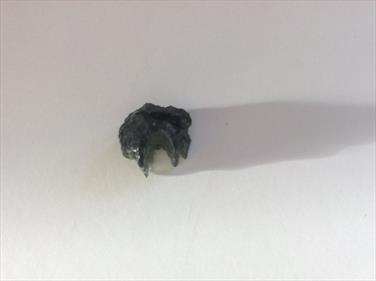 Moldavite specimen small specimen 1.7 grams Czech Republic Sourced by Stone Treasures fossils4sale