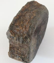 Ichthyosaur Vertebra fossil Peterborough Diameter 8.5cm approx sourced by Stone treasure fossils4sale